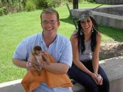 Capuchin Monkey Ready For New Home